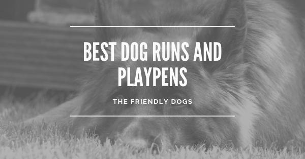 Best Dog Runs and Playpens